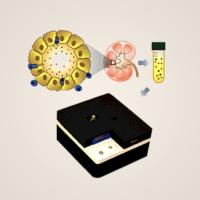 2_Non-Invasive Biomarkers